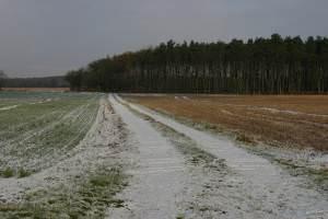 Farmland near Crockey Hill
