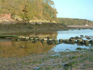 Stepping Stones and bridge at Sandy Haven