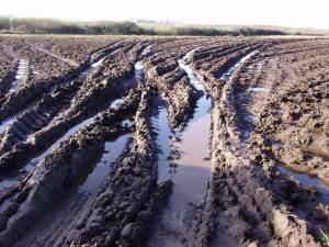Muddy field gateway