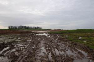 Work on a new fishing lake on farmland just off Back Lane