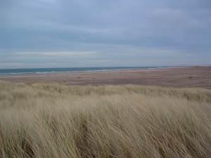 Cheswick Sands