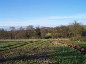 Fields near Silkcroft Farm
