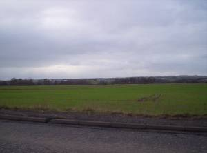 Fields on the Outskirts of Arbroath