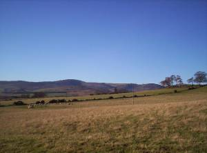 Rough Grazing With Hill of Wirren in the Distance