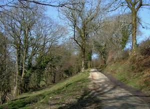 Trackway north of Llangybi, Ceredigion