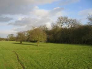 Footpath to Drayton Farm