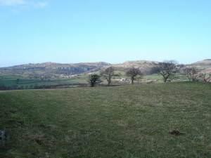 Pant Idda farmland