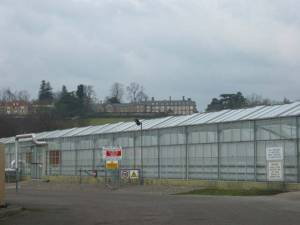 Rhymney Valley Nurseries