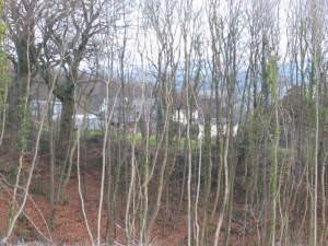 Pentwyn Farm from Cefn Mably Woods