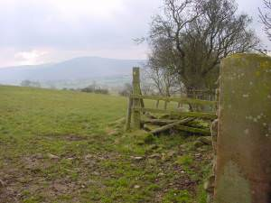Footpath to Bank End