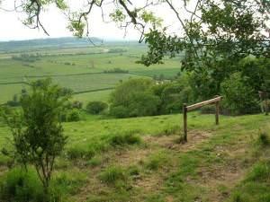 Aller Ridge