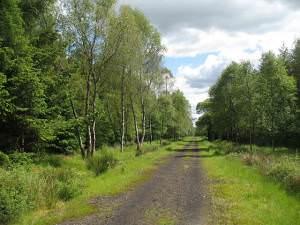 Strathendrick and Aberfoyle Railway trackbed, Flanders Moss