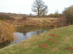 Meander on the River Medway