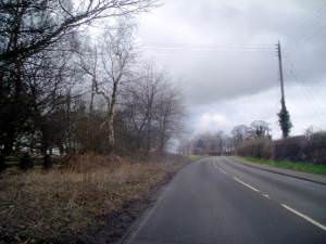 The Avenue, West of Normanby
