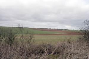 Fields near RAF Cranwell