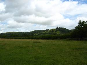 Edge of Hawkesbury Common