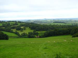 View down the valley from Stoke Woods
