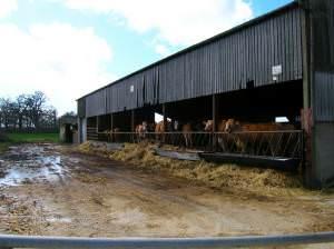 Lunchtime near Tomsetts Farm
