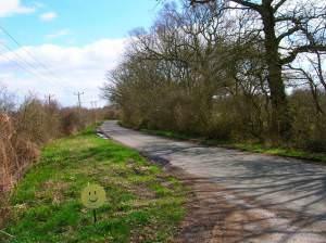 Smiley Face, Honeybridge Lane
