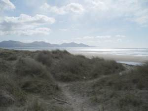 Dunes at Morfa  Dinlle