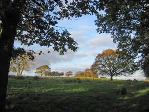 Rough grazing land near Over Kellet