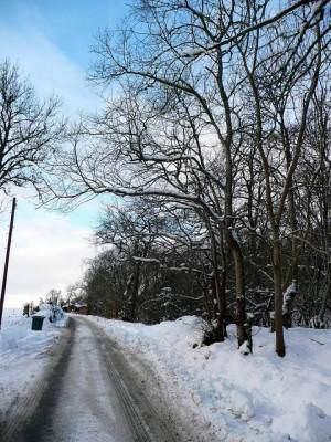 Snow scene at Inchrory