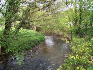 River/Afon Honddu, Pandy