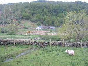 Tan-y-clogwyn farm