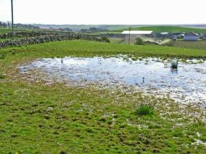 Flooded field at Glenhowl, near Glenluce