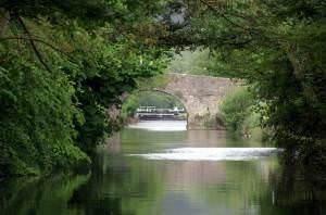 Weston Cut, Locksbridge, Bath