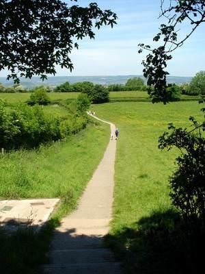Path leading back to Glastonbury