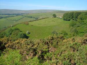 Across Great Combe