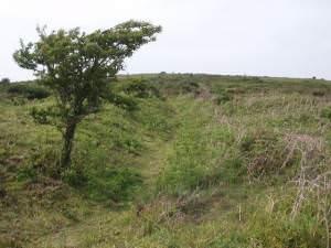 Climbing Godolphin Hill