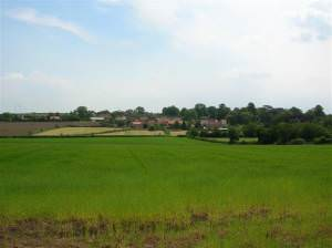Whixley from a distance