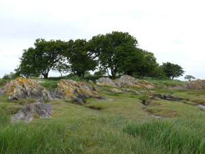 Skellarie Rock