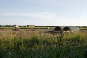 Pig farm, Bulstone