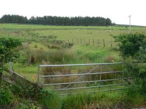 Precarious gate