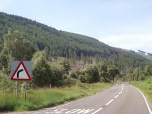 Clear fell on the A84