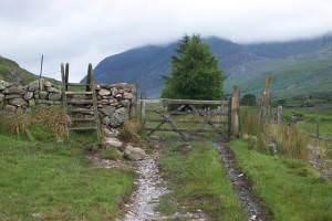 Stile and gate near Helyg