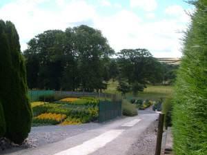 Roberts Nurseries, East Allington
