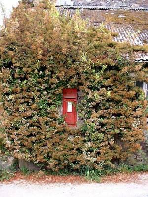 Postbox at Ruthernbridge, Cornwall