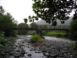 Afon Dyfi