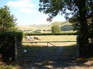 Farm Gate beside the A493