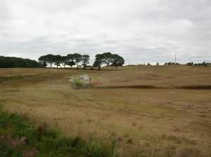 Harvesting near Castle Eden