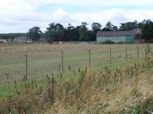 Grange Farm, Barnoldby-Le-Beck