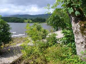 Arrochymore Point, Loch Lomond