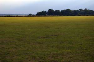 Colne Community School Field
