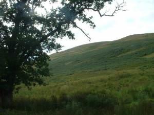 Slopes of Thirlestane Hill