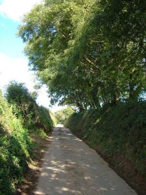 Lane above Lower Sigdon