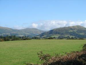 Pasture near Tywyn